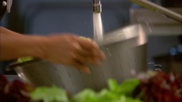 medium shot lettuce being rinsed in large colander under faucet / auckland, new zealand - sink stock videos & royalty-free footage