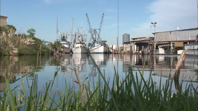 medium shot low angle - grass at water's edge and docked boats / new orleans louisiana - anchored stock videos & royalty-free footage