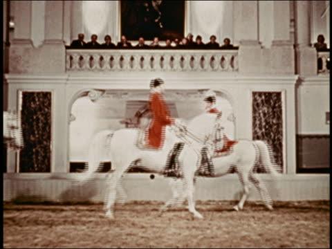 medium shot male equestrians riding lipizzaner horses in formation w/people in balcony above watching - växtätare bildbanksvideor och videomaterial från bakom kulisserna