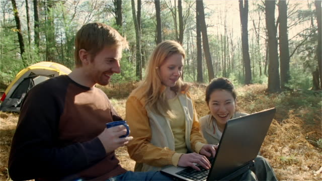 medium shot man and two women looking at laptop while camping/ new york state - laptops in a row stock videos & royalty-free footage