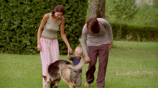 medium shot man and woman walking in grass with baby and dog/ saint-ferme, france - 生後18ヶ月から23ヶ月点の映像素材/bロール