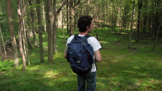 medium shot man hiking in woods/ roxbury, new york - över axel perspektiv bildbanksvideor och videomaterial från bakom kulisserna