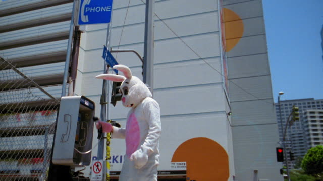medium shot man in rabbit costume dialing telephone number on pay telephone with building in background / low angle - kelly mason videos stock videos & royalty-free footage