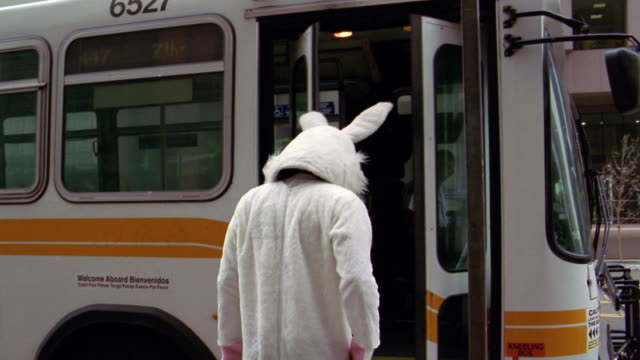 medium shot man in rabbit costume looking at camera before entering bus and sitting down behind bus driver/l.a. - rabbit costume stock videos & royalty-free footage