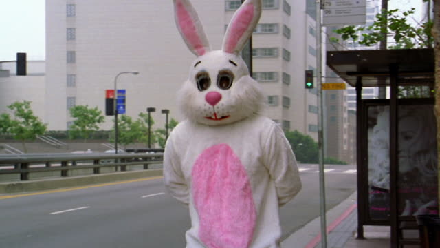 medium shot man in rabbit costume looking for bus and shaking head / los angeles, ca - rabbit costume stock videos & royalty-free footage