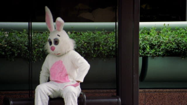 medium shot man in rabbit costume sitting and waiting in bus shelter / los angeles, ca - abwarten stock-videos und b-roll-filmmaterial