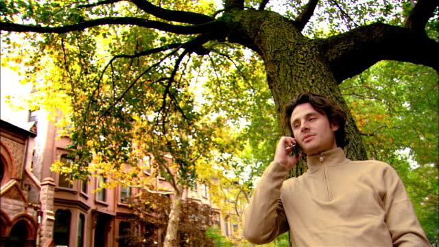 medium shot man standing in front of tree on treelined street and talking on phone/ brooklyn, new york - polo neck stock videos & royalty-free footage