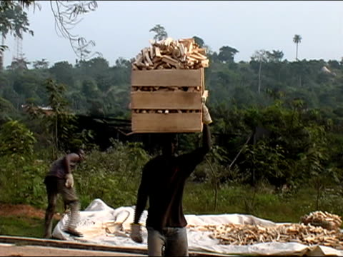 Medium shot man walking while carrying crate of lumber on his head/ Ghana