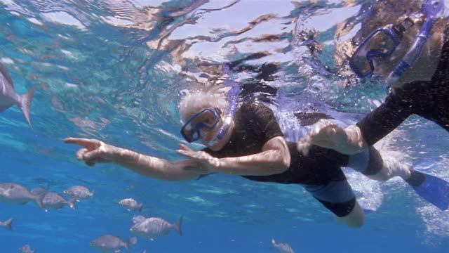 Medium shot mature couple holding hands and snorkeling