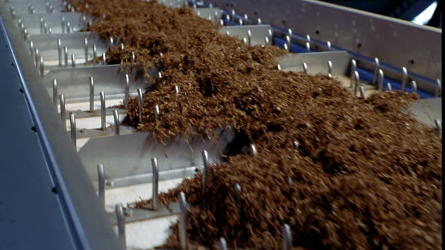 medium shot mounds of tobacco moving along conveyor belt at tobacco factory - tobacco crop stock videos & royalty-free footage