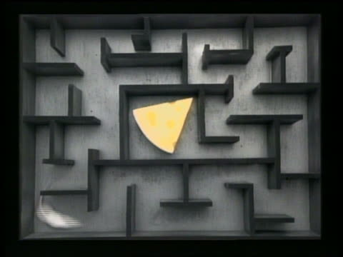 medium shot mouse going through maze with wedge of cheese in center - dejaover点の映像素材/bロール