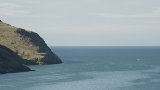 medium shot of a cliffed coast in akaroa harbor - akaroa stock videos & royalty-free footage