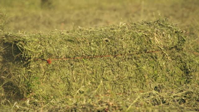medium shot of a hay baler dropping a bale of hay on the ground - プロボ点の映像素材/bロール