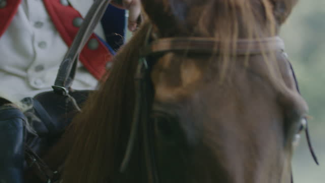 medium shot of a horseman - bridle stock videos & royalty-free footage