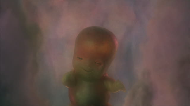 medium shot of a mature fetus in the womb waking up and opening its eyes. - baby boys stock videos and b-roll footage