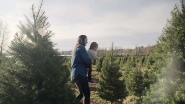 Medium shot of a mother showing pine trees to her child