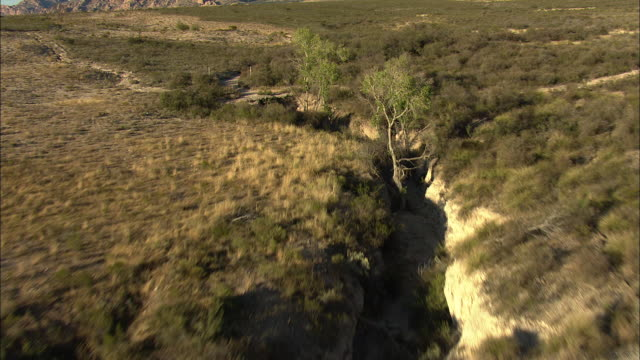 medium shot of a shrubland with mountains in the background in arizona - shrubland stock videos & royalty-free footage