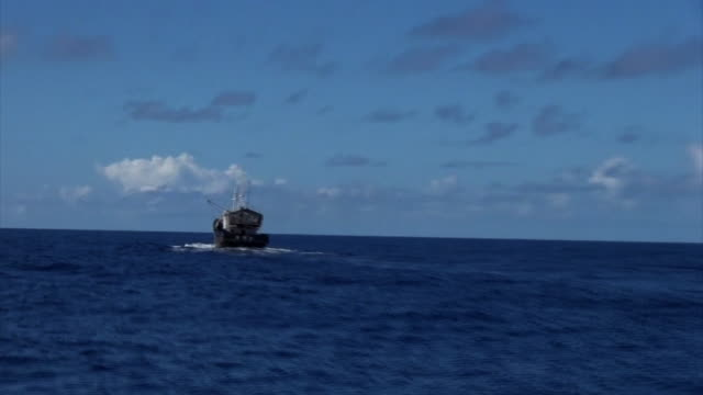 vídeos de stock, filmes e b-roll de medium shot of a suspicious fishing vessel seen within the area of japanese waters where chinese illegal coral poachers are active in zooming in on... - suspeita