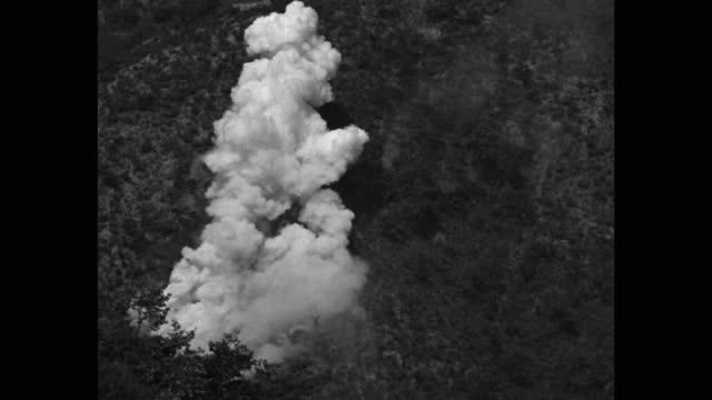 medium shot of bomb explosion in forest - less than 10 seconds stock videos & royalty-free footage