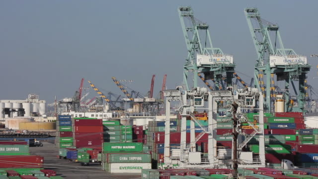 vídeos de stock, filmes e b-roll de medium shot of cargo containers and cranes at the port of los angeles - medium group of objects