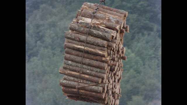 medium shot of crane picking up bundle of wooden logs from truck and unloading it in lumberyard, maine, usa - forestry industry stock videos & royalty-free footage