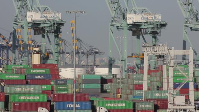 vídeos de stock, filmes e b-roll de medium shot of cranes at the port of los angeles - medium group of objects