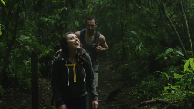 medium shot of curious couple hiking and exploring jungle / arenal, costa rica - costa rica video stock e b–roll