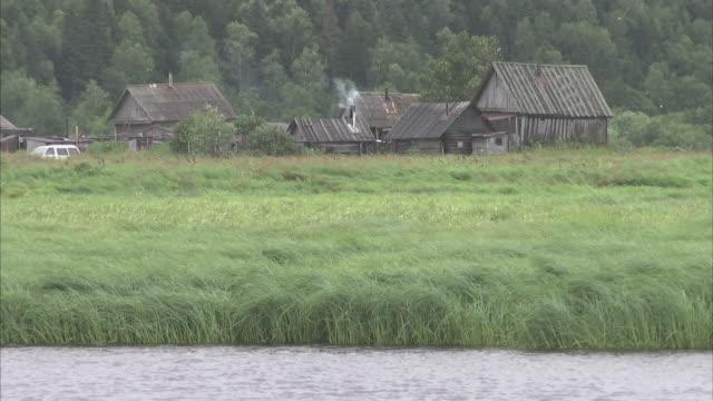 medium shot of farm building amongst reeds on edge of lake - medium group of animals stock videos & royalty-free footage