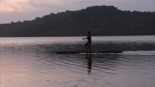 medium shot of man canooing down sepik river at sunset - papua stock videos and b-roll footage