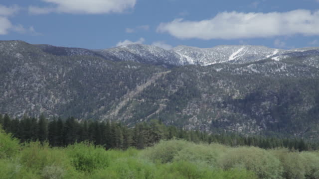 Medium Shot of mountains and forest in Lake Tahoe