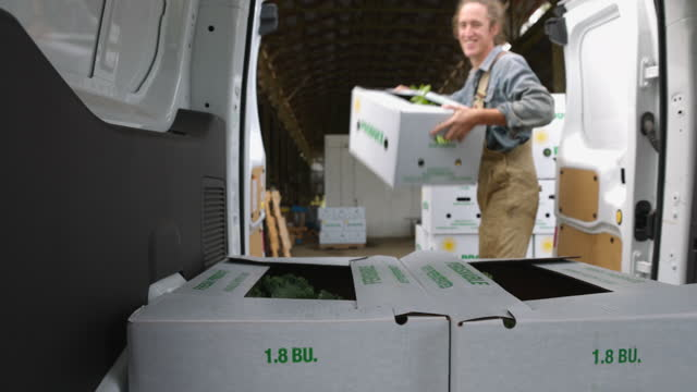 medium shot of smiling farmer putting freshly packed csa boxes into delivery van - independence stock videos & royalty-free footage