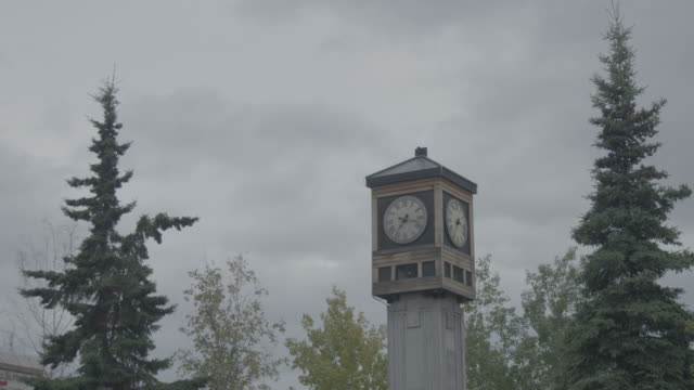 medium shot of the fairbanks rotary 50th anniversary clock and carillon - turmuhr stock-videos und b-roll-filmmaterial