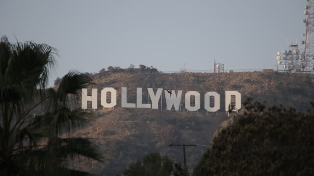 Medium shot of the HOLLYWOOD SIGN with black birds and the communication towers next to it in the Hollywood hills