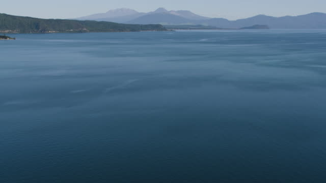 medium shot of the shore of lake taupo - ngauruhoe stock videos & royalty-free footage