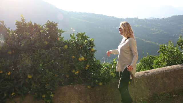 vídeos de stock e filmes b-roll de medium shot of woman walking along path beside citrus grove - segurar