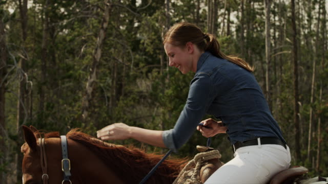 medium shot of young woman horseback riding / idaho, united states - stamm stock-videos und b-roll-filmmaterial