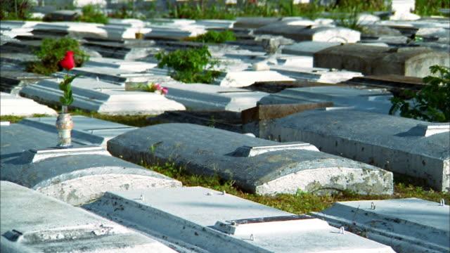 Medium shot pan over graves and rose on grave inside Charlotte Jane Memorial Park Cemetery / Florida