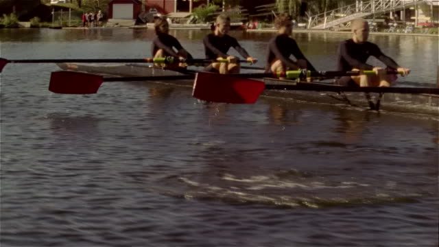 medium shot panning crew team rowing racing shell on charles river - 18 19 years stock videos & royalty-free footage