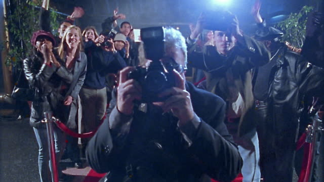medium shot photographers shooting on red carpet / groupies and others photographers in background - film premiere stock videos and b-roll footage