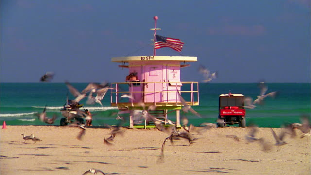 medium shot pink lifeguard post on beach / two women walking by / miami beach, florida - マイアミ点の映像素材/bロール