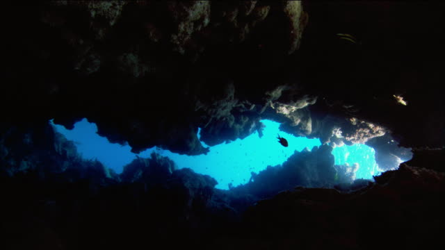 Medium shot point of view swimming through underwater cave / swimming out of cave to surface of water / Coral Sea