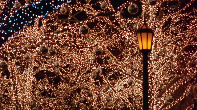 Medium shot rack focus lights and ornaments on treebranches with street light in foreground at night / Central Park, NYC