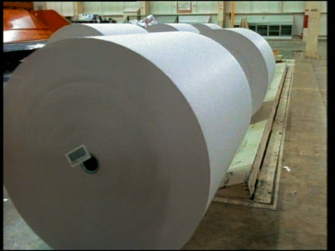 medium shot reams of paper on conveyor belt at mill - paper industry stock videos & royalty-free footage