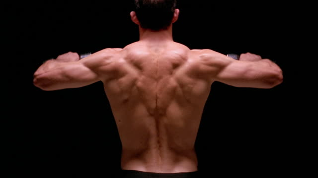 Medium shot rear view of muscular man doing shoulder raises with dumbbells / London