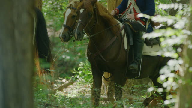 medium shot of horsemen riding among trees - bridle stock videos & royalty-free footage