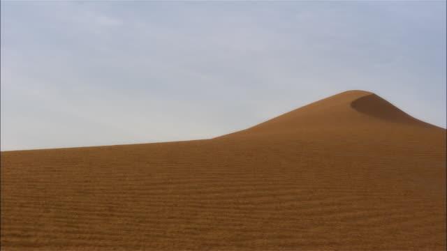 Medium shot sand dune, white 4x4 SUV driving to top of dune, stopping