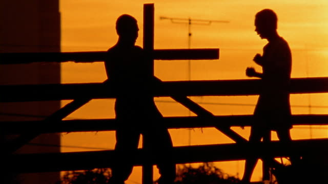 medium shot teenage boys play fighting behind fence at sunset - combat sport stock videos & royalty-free footage