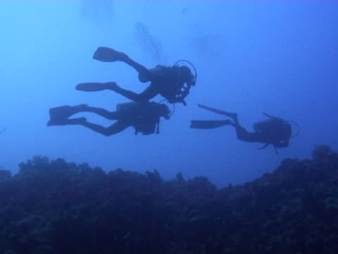 medium shot three divers in deep water. - aqualung diving equipment stock videos & royalty-free footage