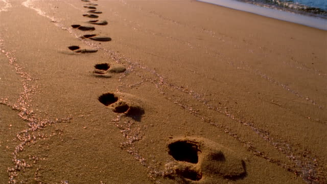 Medium shot tilt up footprints in wet sand leading up to person on beach/ Provincetown, Massachusetts