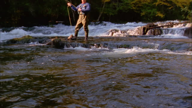 medium shot tilt up man standing on flat rock casting line toward cam while fly fishing in river - fishing line stock videos & royalty-free footage